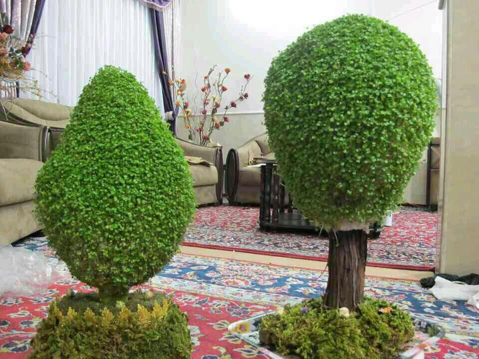 آموزش سبزه به شکل درخت