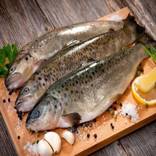 بهترین روش های رفع بوی بد ماهی از دست ها و ظروف