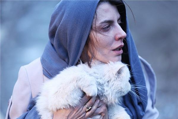 درخشش لیلا حاتمی در فیلم رگ خواب + ویدیو