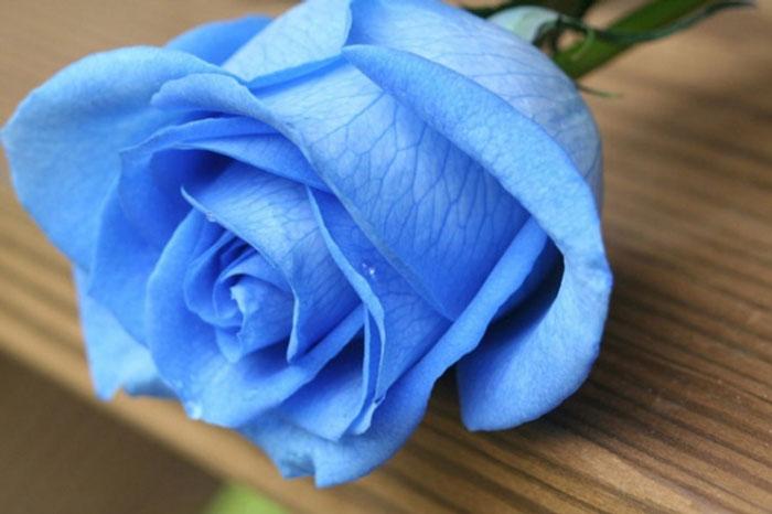روانشناسی رنگ آبی و خصوصیات افراد علاقه مند به آن